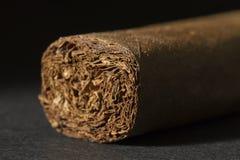 完善滚动的雪茄 免版税库存照片