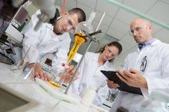 完成实验的两位年轻研究员在实验室 免版税库存照片
