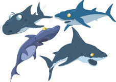 完整集鲨鱼 免版税库存图片