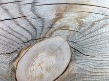 宏指令的老和概略的木纹理背景关闭 免版税图库摄影