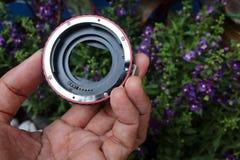 宏指令的透镜适配器与花 免版税库存照片