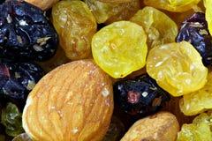 宏观不同的干果子 免版税图库摄影