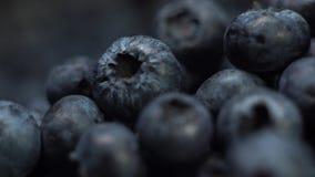 宏观关闭新鲜的鲜美蓝莓或可口蓝莓在阳光极端关闭 影视素材