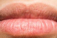宏观妇女自然的嘴唇 免版税图库摄影
