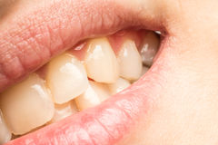 宏观妇女自然嘴唇和的牙 免版税库存图片