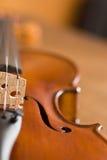 宏观小提琴 库存照片