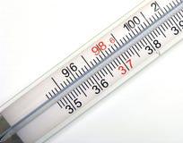 宏观温度计 库存图片