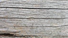 宏观灰色木纹理背景 免版税库存图片