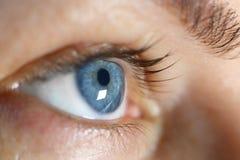 宏观特写镜头女性眼睛 免版税图库摄影