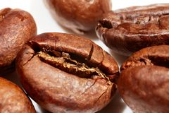宏观的咖啡豆 免版税库存照片