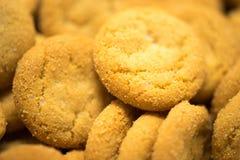 宏观的饼干 库存图片