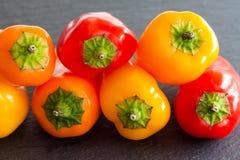 宏观看法甜椒胡椒 明亮的红色橙黄菜,浅景深照片 免版税库存图片