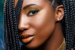 宏观秀丽面孔射击了有辫子的非洲女孩 免版税库存照片