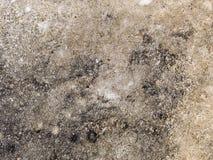 宏观纹理-混凝土-变色的路面 库存照片