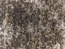 宏观纹理-混凝土-变色的路面 免版税库存照片