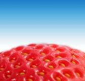 宏观草莓 免版税库存照片