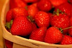 宏观草莓ina篮子 库存图片