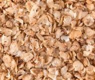宏观荞麦剥落纹理 图库摄影