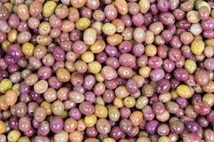 宏观观点的作为背景的橄榄在香料义卖市场 库存照片