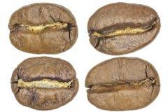 宏观coffe豆 免版税库存图片