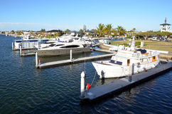 宗主海岛英属黄金海岸昆士兰澳大利亚 免版税库存图片