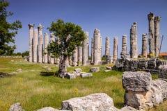 宙斯寺庙在Uzuncaburc,土耳其 免版税库存图片
