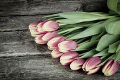 定调子郁金香的花束葡萄酒在木背景开花 妇女` s与花的天背景 免版税库存图片