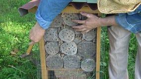 定象在昆虫旅馆的金属网保护的免受啄木鸟 影视素材