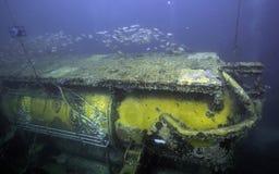 宝瓶星座佛罗里达关键实验室缓慢地在水面下 免版税库存照片