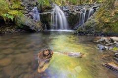 绿宝石沿与漂流木头的戈顿小河落在俄勒冈 免版税库存图片