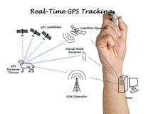 实时GPS跟踪 库存图片