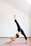 实践体操瑜伽的妇女柔术表演者 免版税库存照片