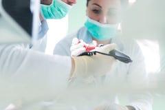 实践在一个医疗时装模特的牙科学生特写镜头 免版税库存图片