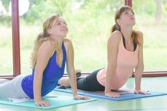 实践在健身房的逗人喜爱的妇女瑜伽类 免版税库存图片
