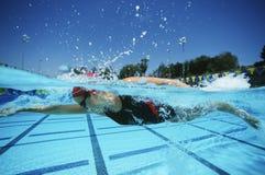 实践在竞争前的游泳者 免版税图库摄影
