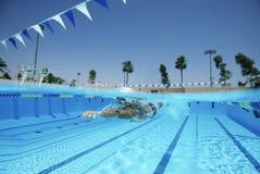 实践在水池的游泳者 免版税图库摄影