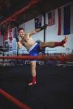 实践拳击的确信的拳击手 库存照片