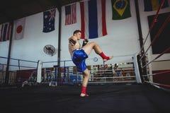 实践拳击的确信的拳击手 免版税库存图片