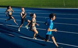 实践跑在跑马场的多种族运动员 免版税库存图片