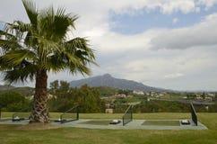 实践高尔夫球发球区域 图库摄影