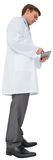 实验室外套的年轻医生使用片剂个人计算机 库存图片