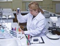 实验室工作 免版税库存照片