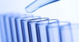 实验室研究测试 吸移管滴下蓝色净水下落入试管 化学制品和医学概念 影视素材