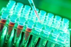 实验室研究癌症疾病,有核糖核酸样品的机架 库存照片