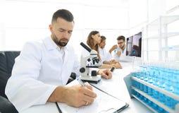 实验室科学家工作年轻人 库存图片