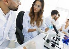实验室职员在工作场所 库存照片