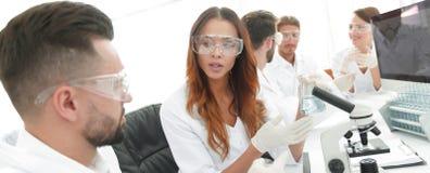 实验室职员在工作场所 图库摄影
