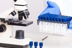 实验室设备 免版税库存照片
