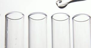 实验室试验吸移管滴下透明化学制品入四试管在白色背景 r 股票录像