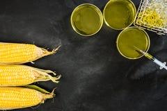 实验室试验玉米产品和食物 图库摄影